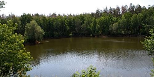 Тольяттинцев приглашают на субботник у озера