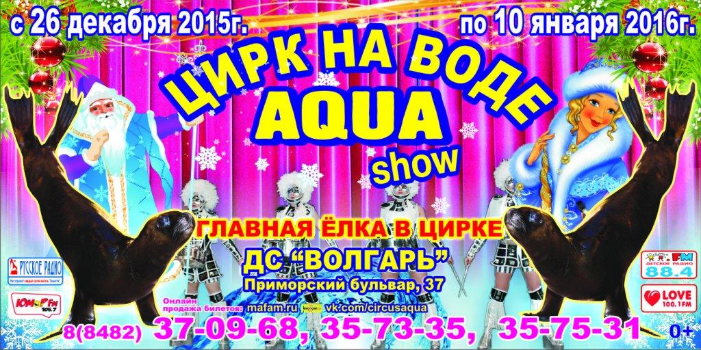 Новогодние спектакли Цирка на воде «AQUA SHOW» в Тольятти
