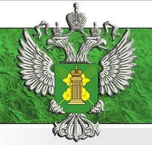 Свыше 12 тонн семян непроверенной кукурузы хранилось на складе компании из Самарской области