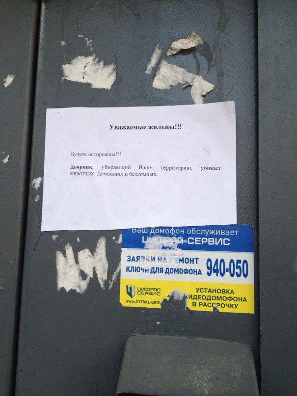 В Тольятти работает дворник, который убивает животных?