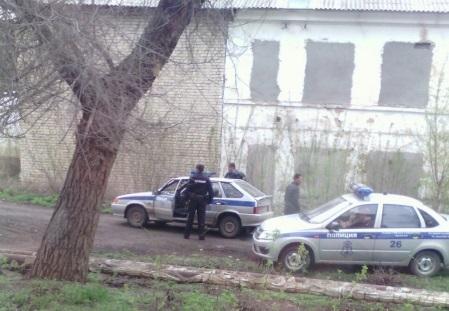 В Чапаевске полицейские ловили сбежавшего медведя