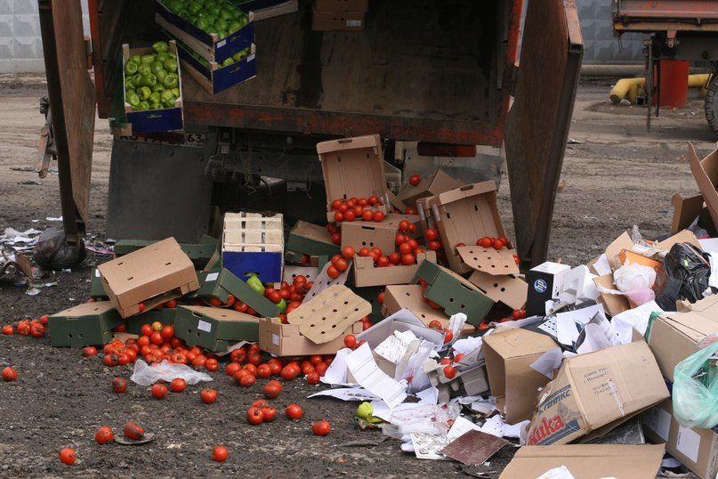 В Тольятти изъяли и уничтожили 600 кг овощей