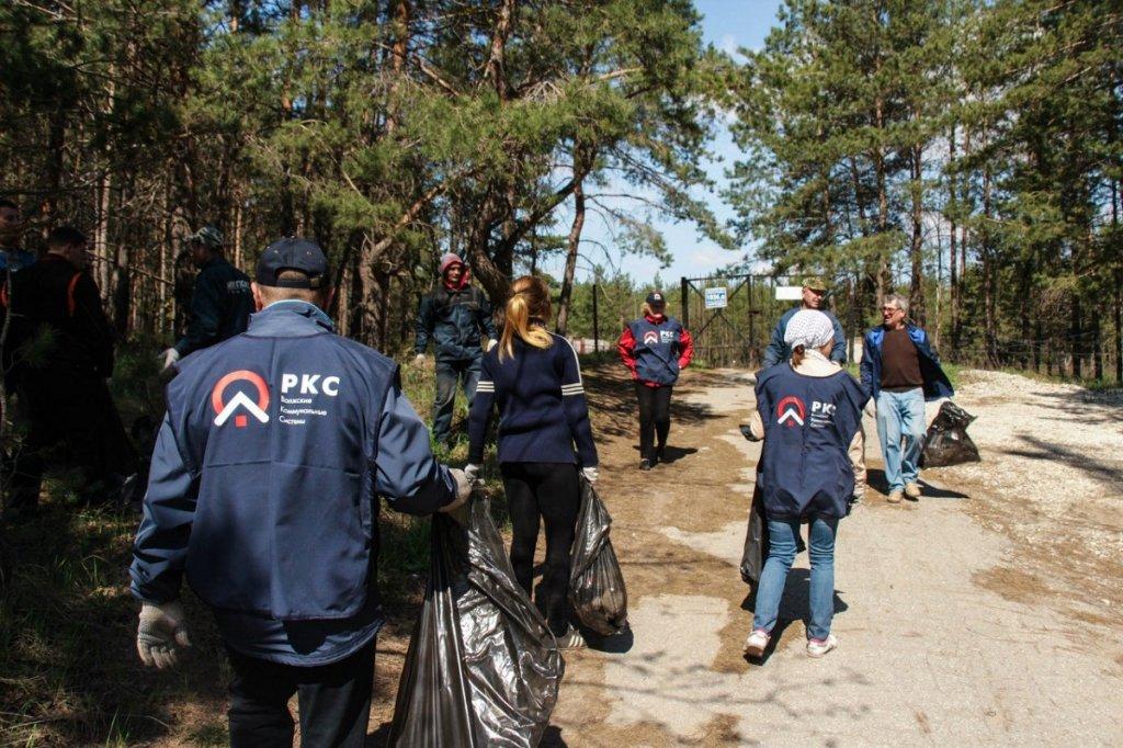 ВоКС очистил тольяттинский лес от мусора