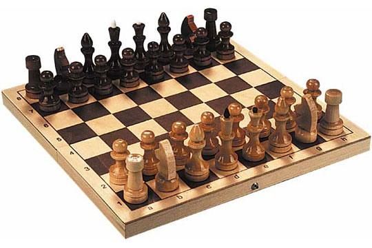 В Тольятти приедут шахматисты из Китая