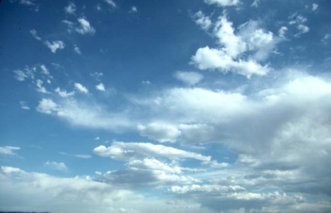 Мэрия о состоянии атмосферного воздуха