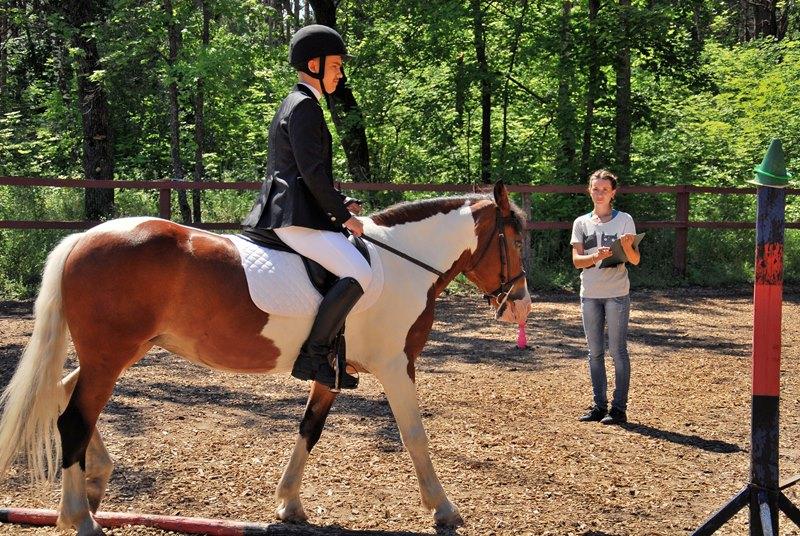 Завтра в Тольятти состоится открытое первенство по конному спорту