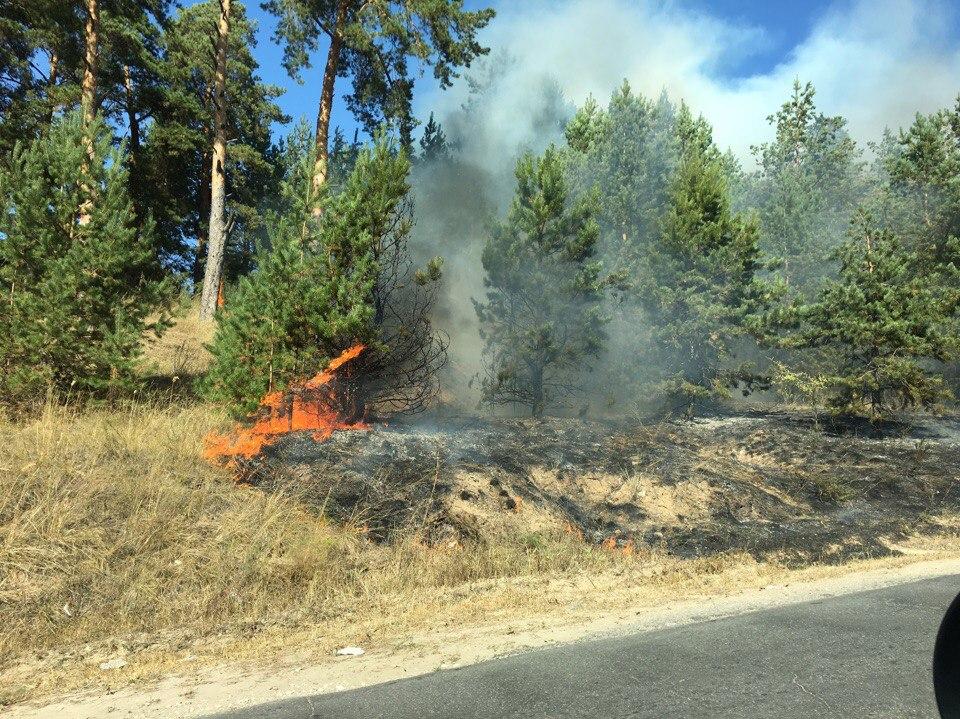 Внимание! На Комсомольском шоссе ограничено движение транспорта из-за лесного пожара
