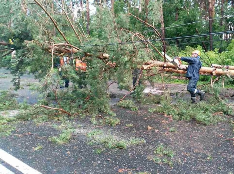 МЧС региона предупреждает жителей о сильных порывах ветра и грозе
