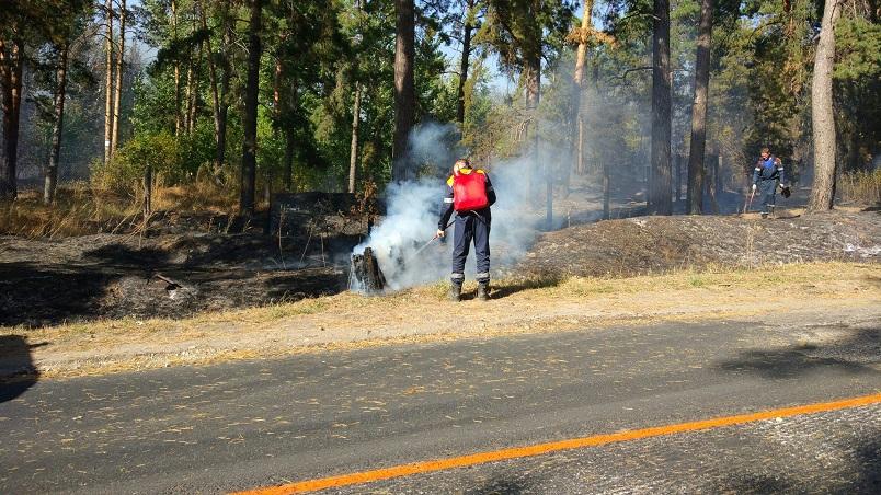 Объявлена локализация возгорания в Портпоселке (фото)