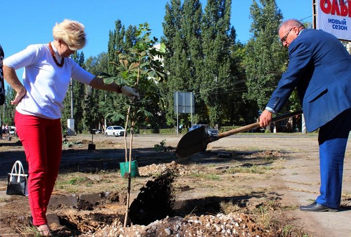 В Тольятти высадили аллею «Дружбы народов»