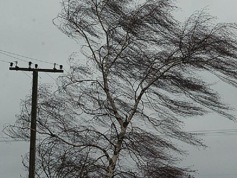 Тольяттинцев предупреждают о сильном ветре сегодня и завтра