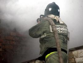 Под Тольятти сгорели две постройки. Пожарные спасли мужчину