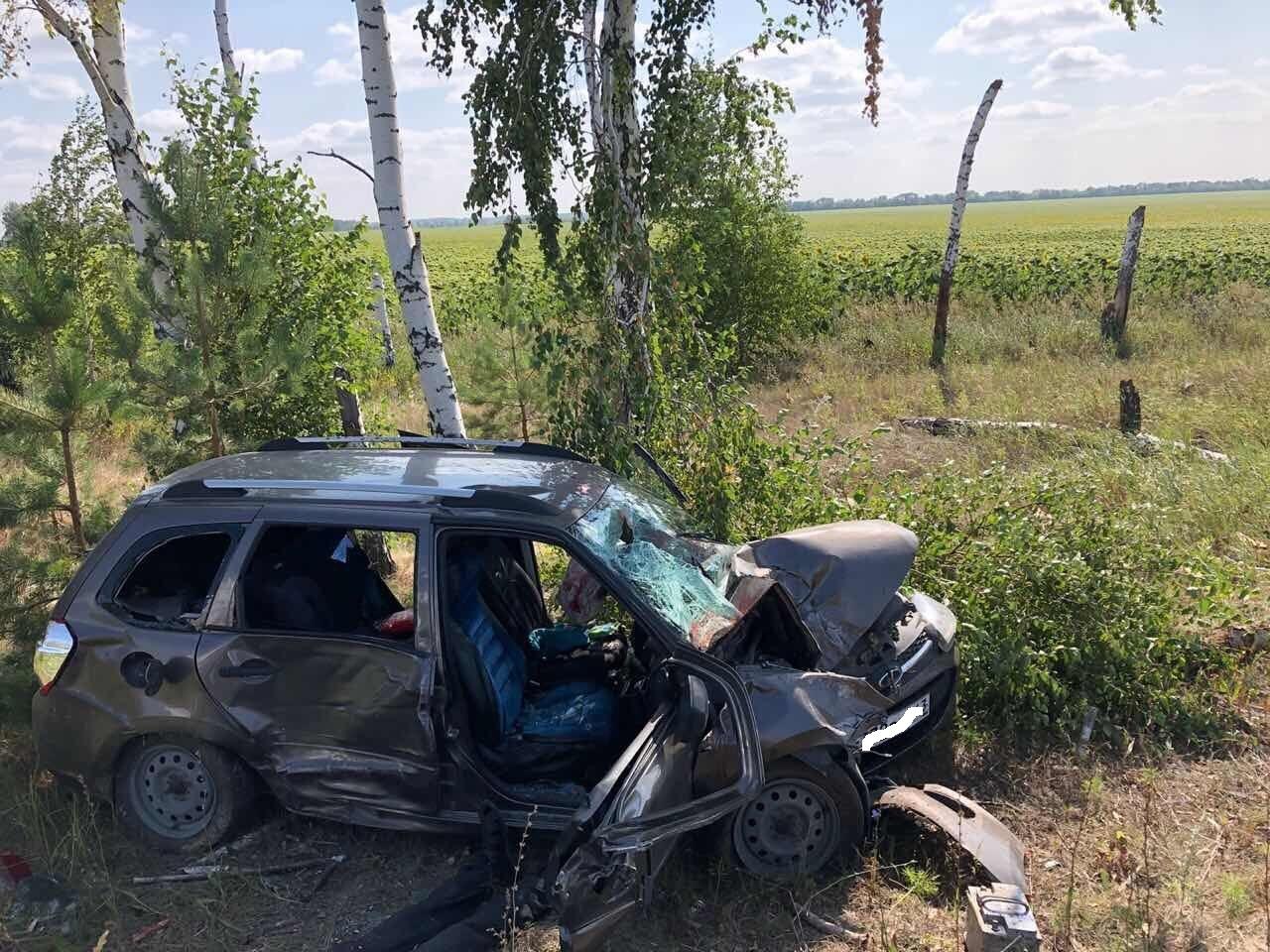 Под Тольятти погиб водитель «Калины», съехавшей в кювет