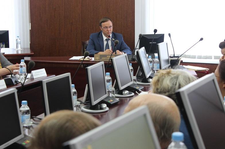 Дмитрий Микель представил концептуальный проект «Исторический центр Тольятти»