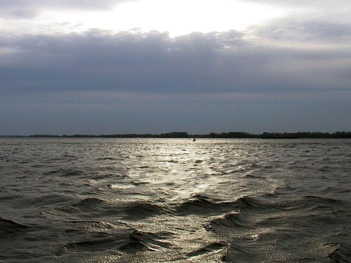 Тольяттинским рыбакам грозит 5 лет тюрьмы за вылов 10 щук
