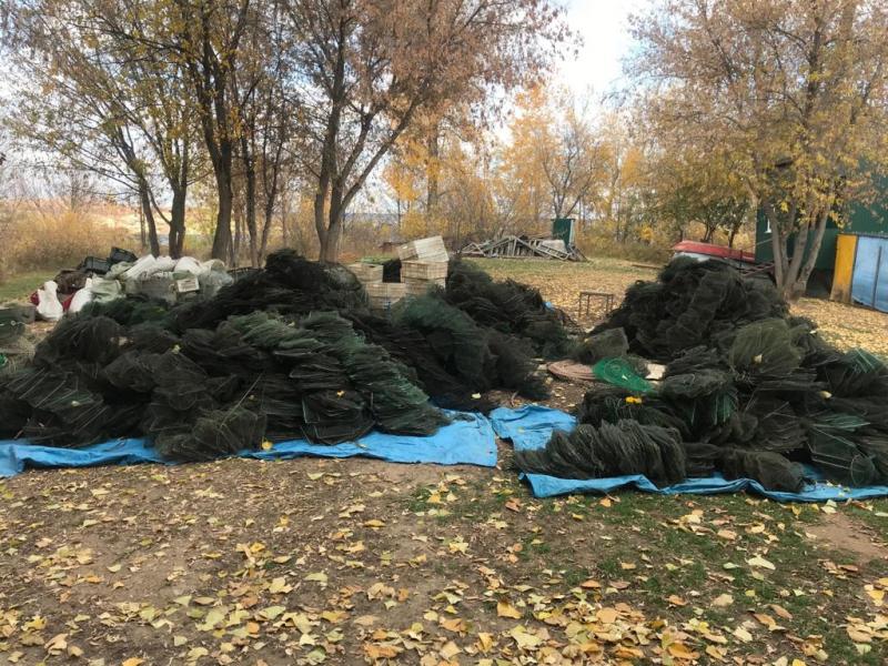 Под Тольятти поймали браконьеров, сделавших из рыбалки преступный бизнес