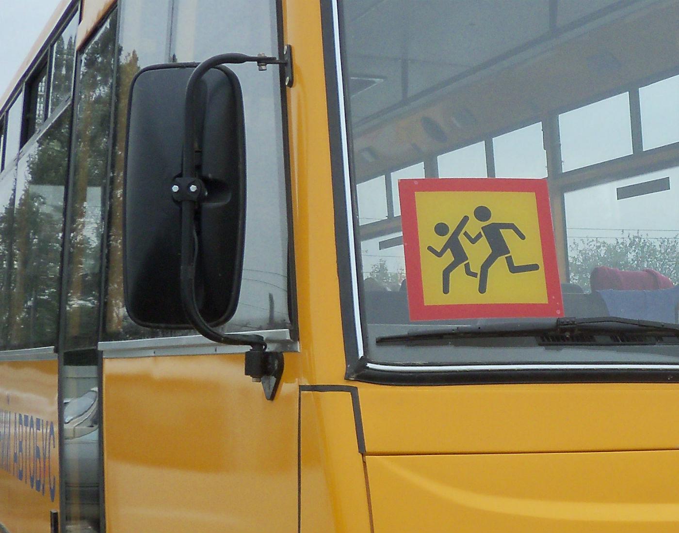 Директор тольяттинской школы получил штраф за неправильную перевозку детей