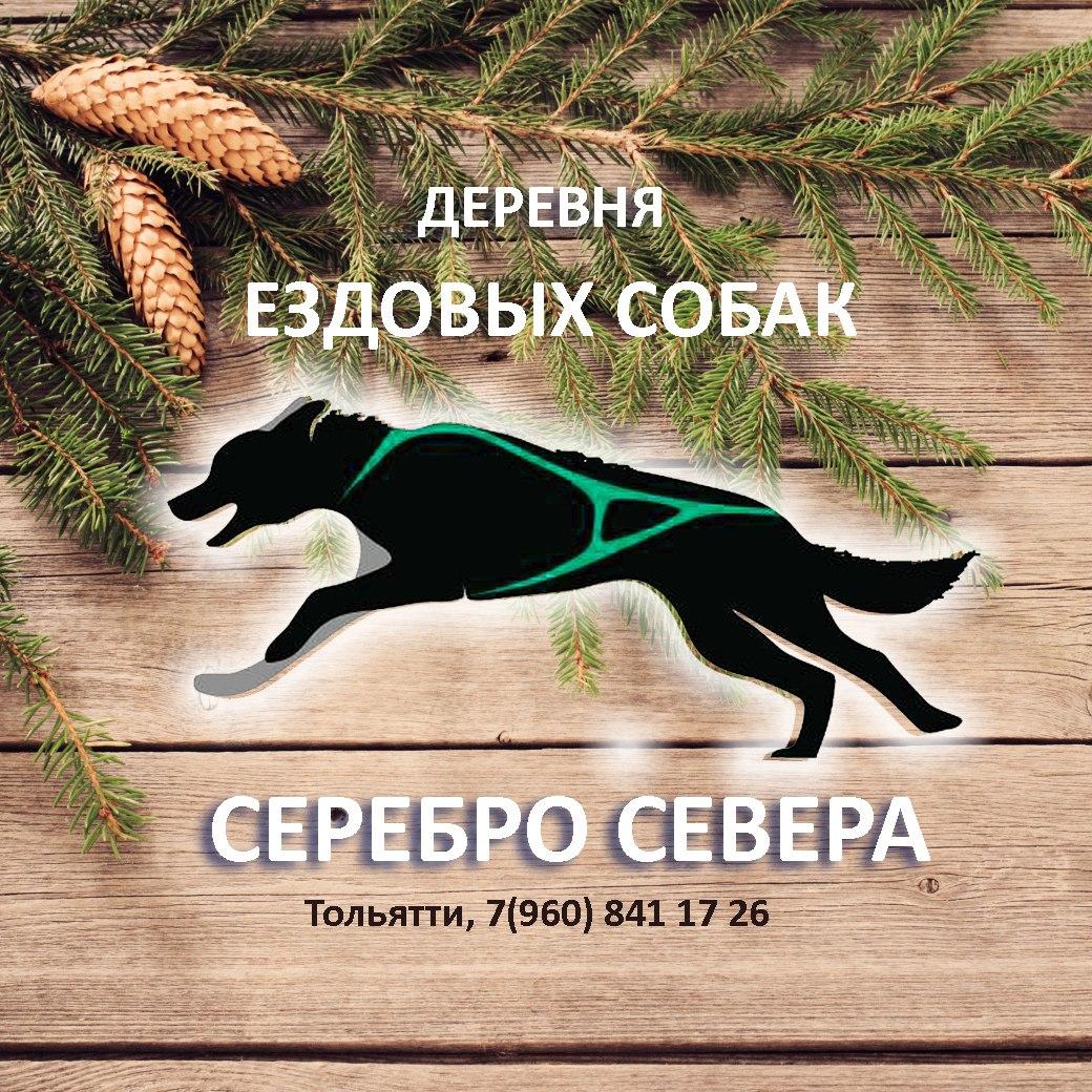 Европейские туристы посетили центр «Серебро Севера» в Тольятти