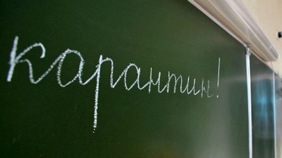 Внимание! В Тольятти на неделю закроют школы на карантин из-за ОРВИ и гриппа