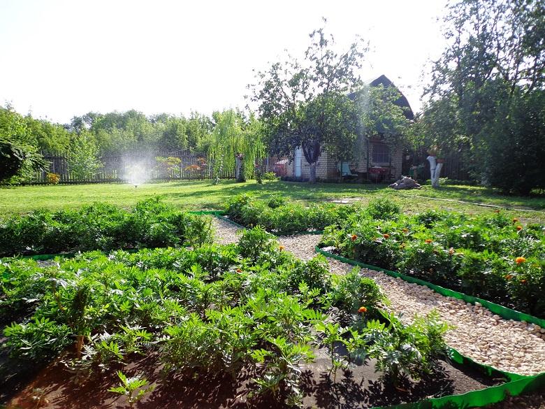 Как отличить сад от огорода: В Кадастровой палате ответили на главные вопросы нового закона