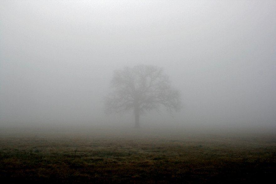 Тольяттинцев предупреждают о тумане и неблагоприятных метеоусловиях