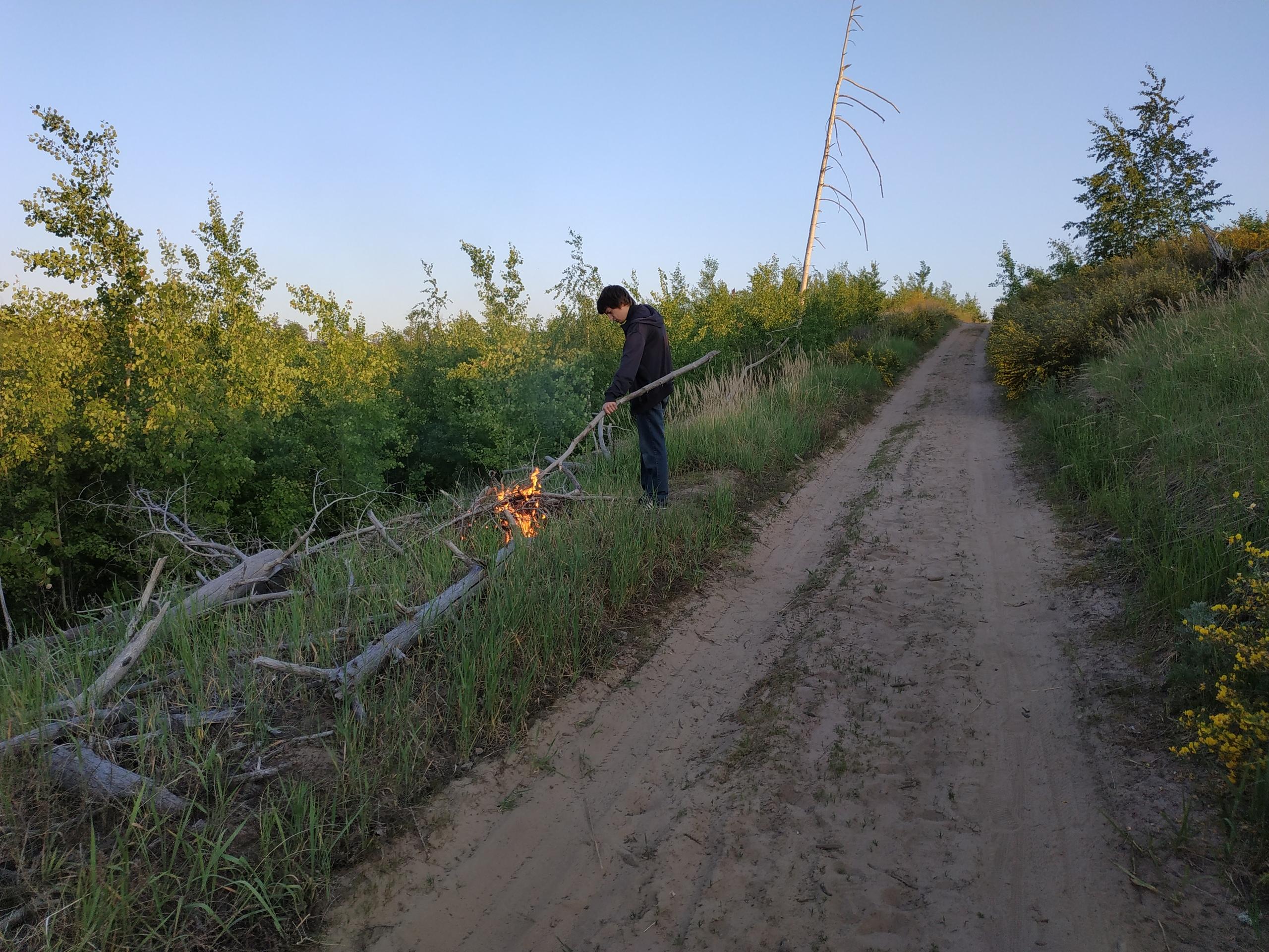 Задержан предполагаемый поджигатель леса в Тольятти