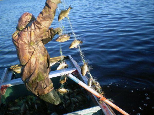 Тольяттинцу грозит два года тюрьмы за рыбалку в местах нереста