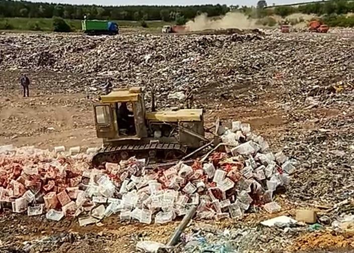 В Самарской области бульдозерами раздавили 18 тонн незаконных томатов