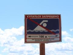 Купаться запрещено: В Волге на Итальянском пляже в Тольятти нашли опасные бактерии
