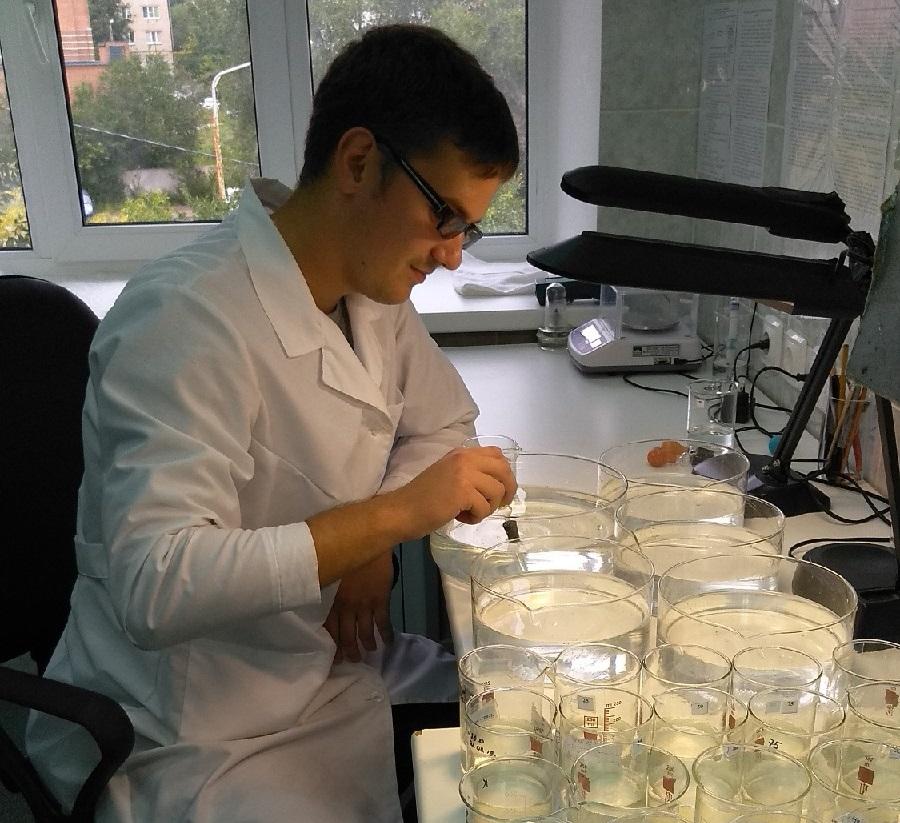 Тольяттинские гидробиологи не обнаружили токсичности в воде Волги