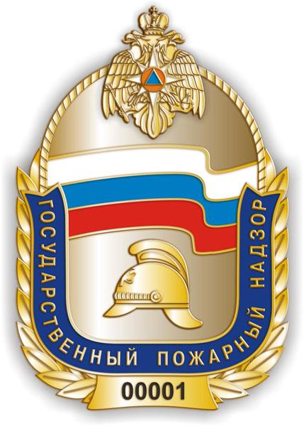 Жалобы граждан разделили: В Тольятти изменилась структура Отдела надзорной деятельности МЧС