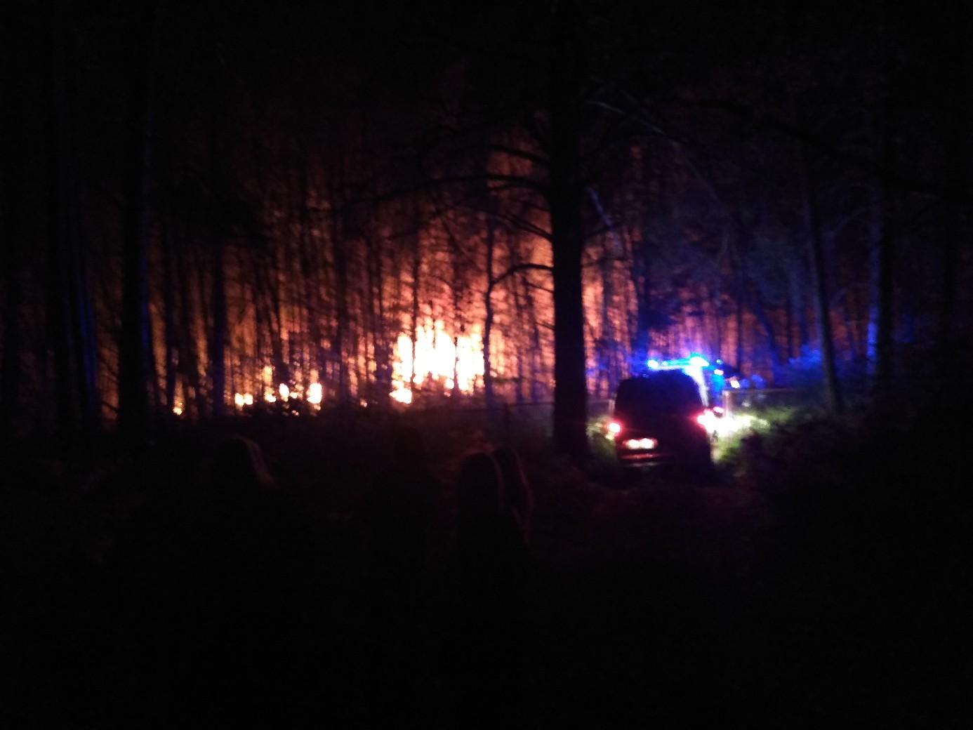 Ночью на турбазе под Тольятти произошел пожар