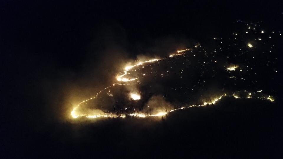 В Тольятти сгорела часть леса. Требуются добровольцы