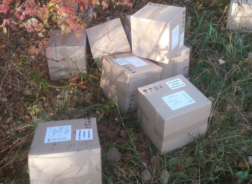 Полиция изъяла коробки с вакциной, найденной в лесу Тольятти