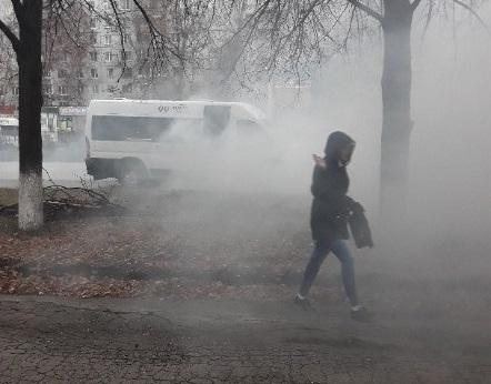 Двери не открывались: В Тольятти набитая людьми маршрутка задымилась на ходу