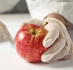 В Курумоче задержали таджика с зараженными яблоками