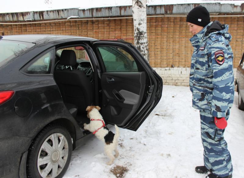 В Тольятти на КПП собака Белла указала полицейским на преступника