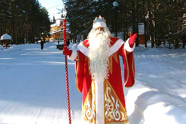 В Тольятти визит Деда Мороза и Снегурочки стал самым дешевым в России