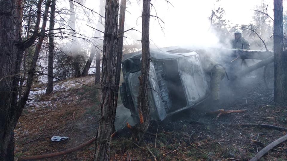 В Тольятти иномарка застряла в деревьях и загорелась