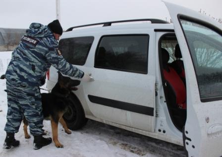 В Тольятти собака Тинто указала на машину с наркотиками