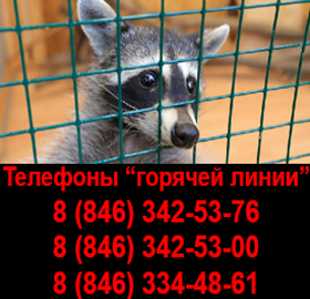 Жители Самарской области могут сообщить о незаконных контактных зоопарках