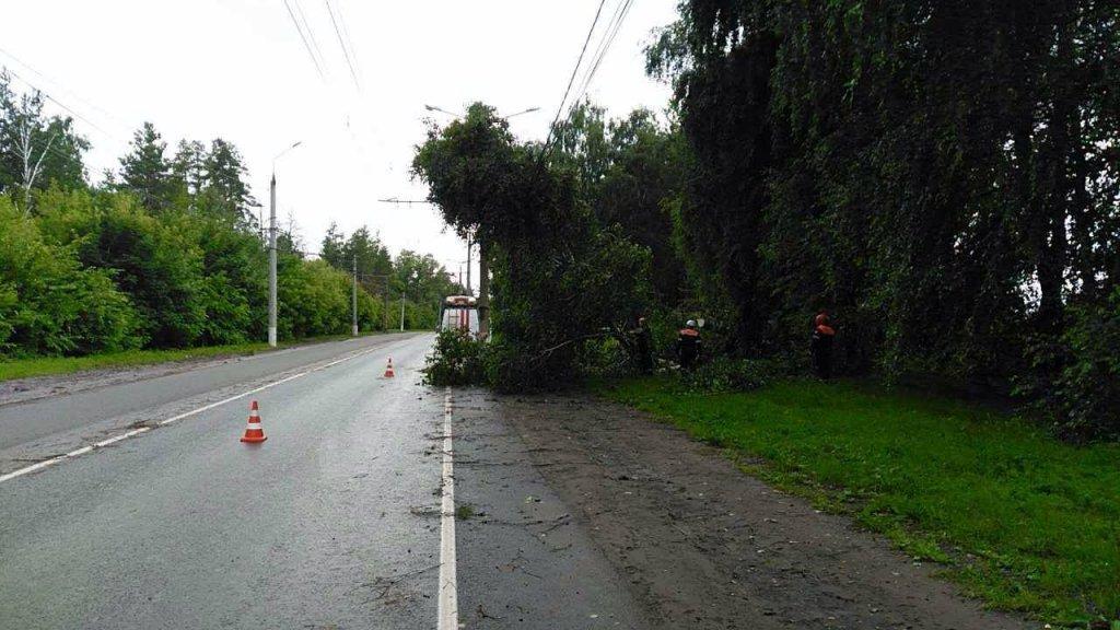 Власти объяснили, почему застопорилась реконструкция лесной дороги в Тольятти