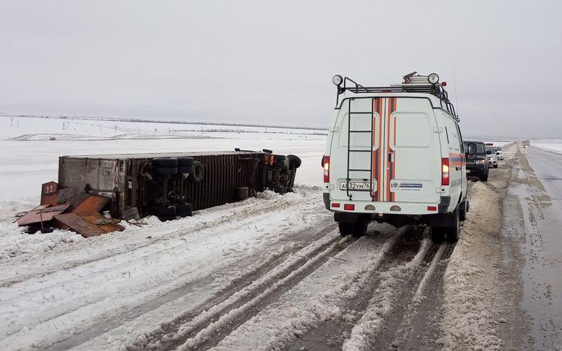 На трассе в Самарской области перевернулась фура с 11 лошадьми