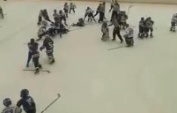 В Тольятти ищут виновников массовой драки во время детского хоккейного матча