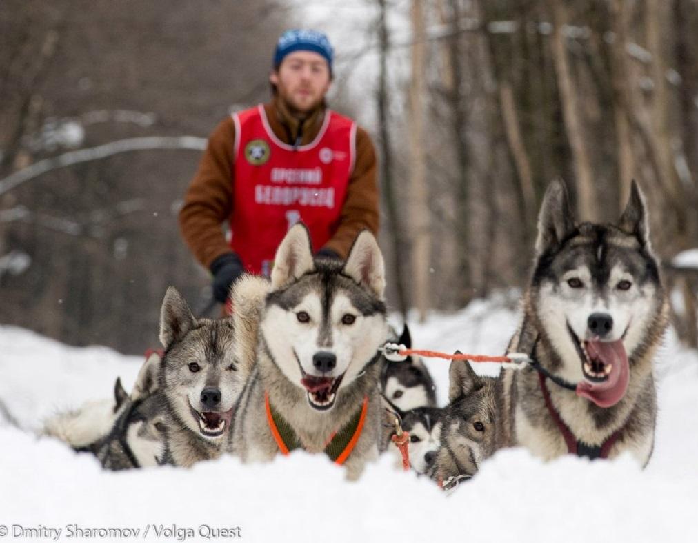 Самарская область готова к старту гонки «Волга Квест»