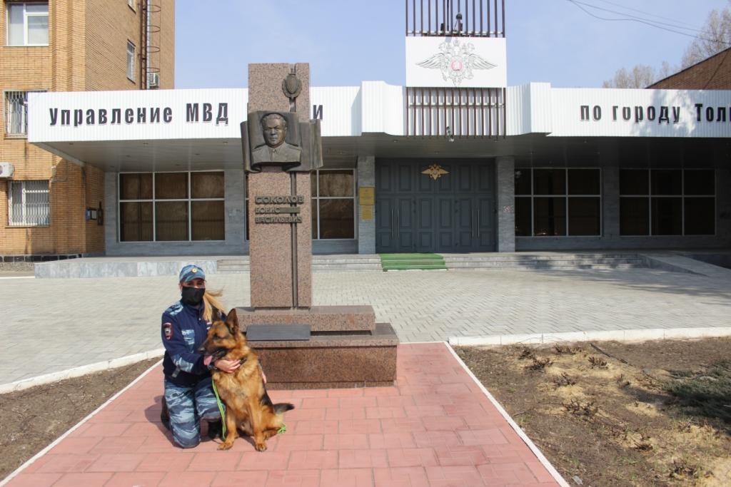 Тольяттинская собака отыскала в городе похитителя смартфона