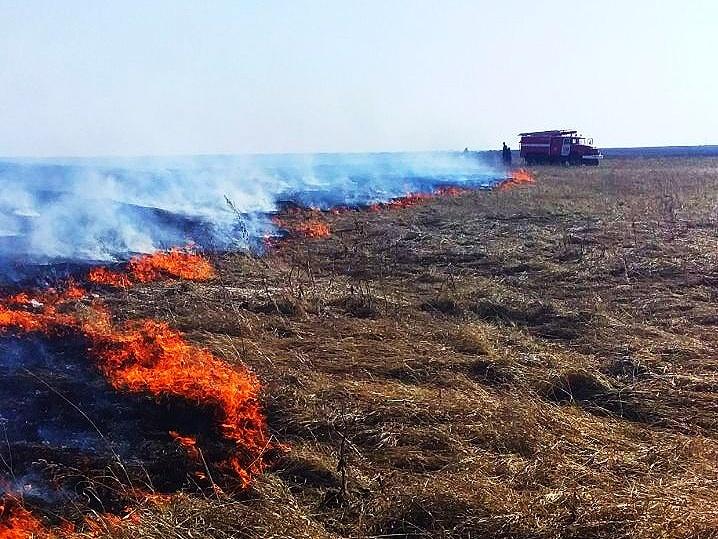 Что запрещено делать во время особого противопожарного режима в Самарской области
