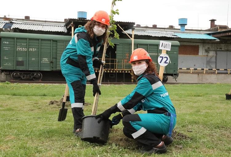 В Тольятти высадили 75 деревьев в честь юбилея Победы