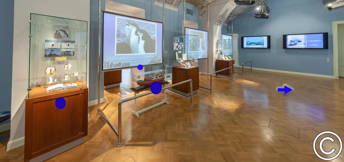 Выставка Арктика