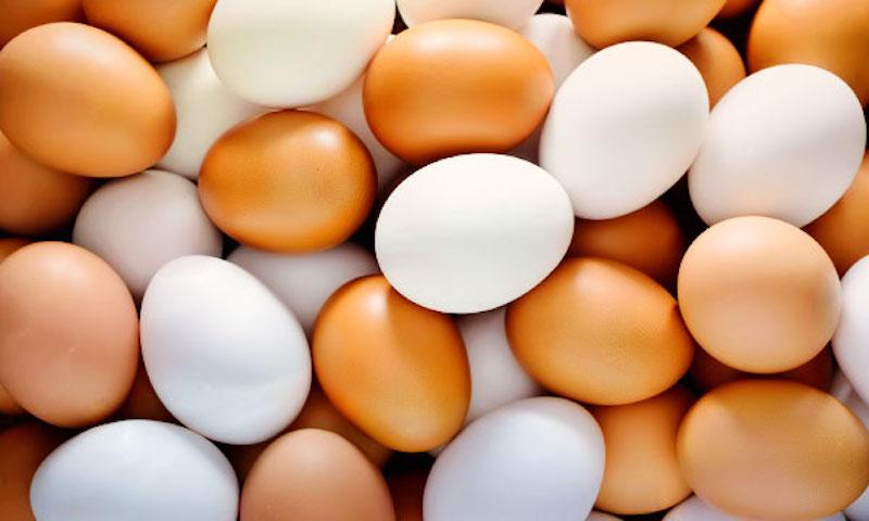 Диетолог объяснил, почему яйца помогают похудеть